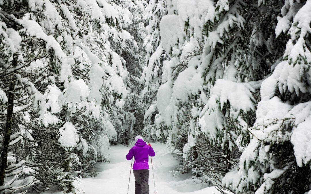 Femme faisant su ski de fond